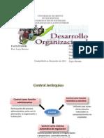Presentacion de Desarrollo Organizacional