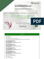PENSAMIENTO_ALGEBRAICO_Y_DE_FUNCIONES