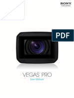 Vegaspro100d Manual Enu