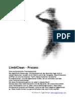 LimbiClean Prozess