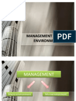 Management and Its Environment_FINAL