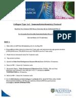 CollagenType1a1-IHC