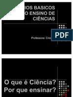 AULA 2 - PRINCÍPIOS BASICOS DO ENSINO DE CIÊNCIAS