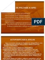 Surse_de_poluare_a_apei