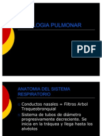 fisiologia-pulmonar-1221698459416640-9