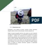 Diagnóstico de Plantas Medicinales 2.1
