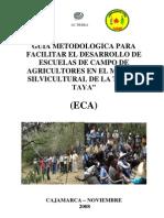 Guía para el Desarrollo - ECA (Tara)