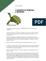Resumen de La Tortuga Gigante