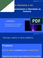 """DETERMINISMO E LIBERDADE (de acordo com o manual """"Pensar Azul"""")"""