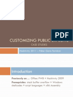 Customizing Public Exploits