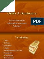Genes & Dominance