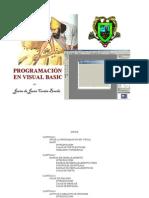 Programaci n Con Visual Bas