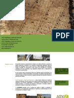 Arxe Arqueología Dossier 2010