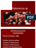 Staphylococcus Sp Meso