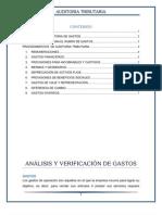 Analisis y Verificacion de Gastos
