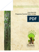 Línea base del PFBC