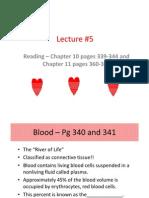 Cardiac System Lecture Blackboard