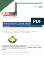 ion Del Dna en Cancer de Mama