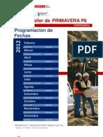 brochurep6basico
