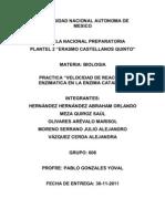 Practica Catalasa Corregida