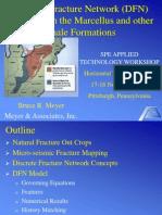 Meyer DFN Model