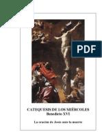 20.  La oración de Jesús ante la muerte - Benedicto-XVI