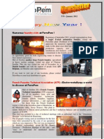 FerroPem Newsletter 8 - January 2012