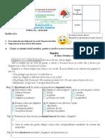 Evaluare in Educatie Romana 2009