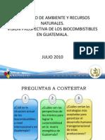 15 Panel IV Perspectiva Ambiental