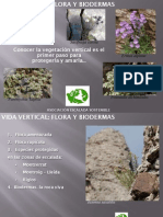 AEs Flora Presentacion VILANOVA