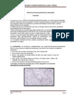 Informe(Arc View)