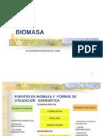 Biomasa - Julio Montes - 271004