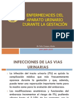 Infeccion Urinaria Gestacion Fileminimizer