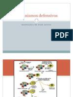 Mecanismos defensivos