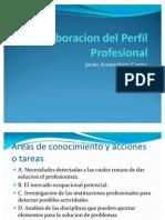 Elaboracion Del Perfil Profesional