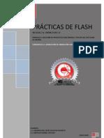 Practicas Flash