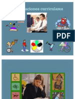 Adecuaciones curriculares Seminario 2007-08