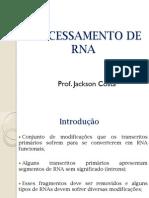 BIOCIÊNCIAS_-_Processamento de RNA