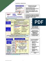 4.02. Evaluación de tareas, prácticas, competencias