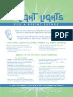 Bright Lights CFL