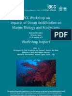 Impacts of Ocean Acidification on Marine Biology and Ecosystems