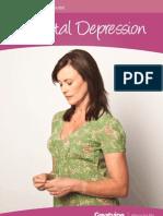 Greatvine.com Guide Postnatal Depression