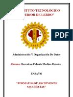 Instituto Tecnologico Superior de Lerdo_Fabiola
