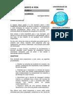 R4- PRIMEIROS SOCORROS