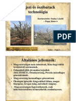Szalay Papp Oszibarack Kajszi Termessztestechnologiaja