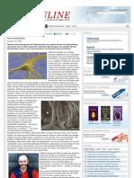Nervenimplantate Info Kopp Verlag De