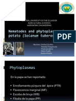 Nematodes and Phytoplasmas on Potato