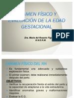 examenfsicoyevaluacindelaedadgestacional-090328203004-phpapp01