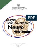 Curso Teórico-Prático de Neuroanatomia Funcional