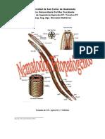 Nematodos Fitopatogenos 2011 PDF Avf